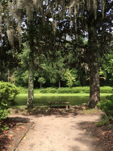 Middleton Place Plantation, Charleston, SC